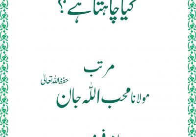 islami nizam e taleem 1